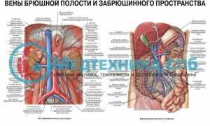 Что показывает МРТ брюшной полости, отзывы